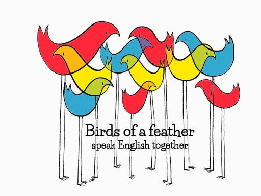 Birds color corrected